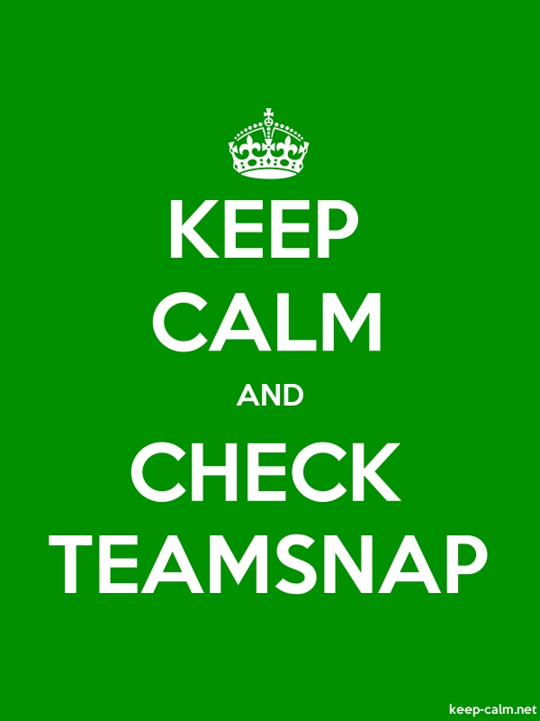 KEEP CALM AND CHECK TEAMSNAP - white/green - Default (600x800)