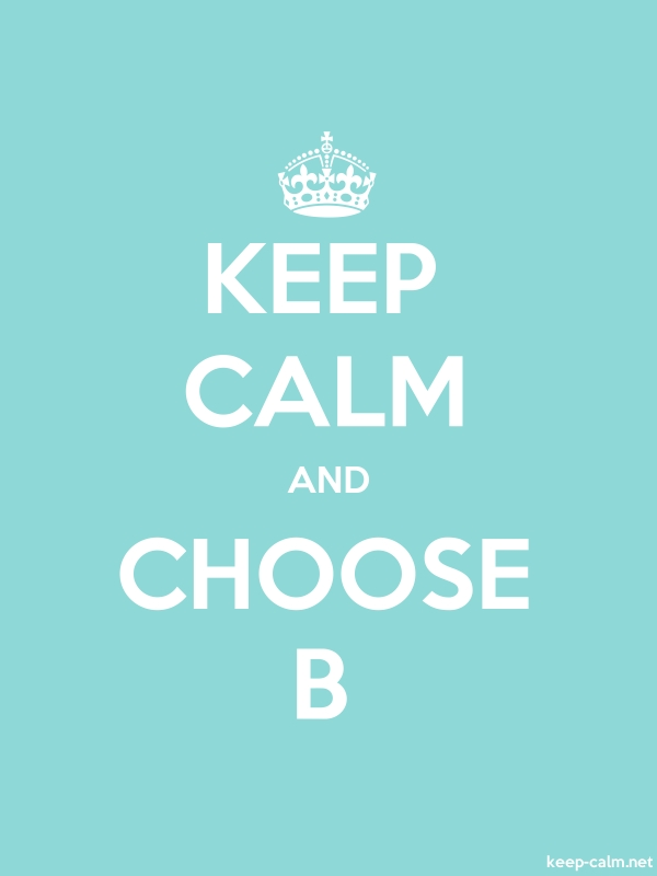 KEEP CALM AND CHOOSE B - white/lightblue - Default (600x800)