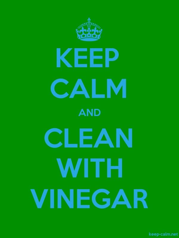 KEEP CALM AND CLEAN WITH VINEGAR - blue/green - Default (600x800)