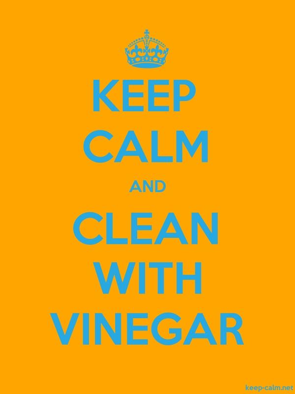 KEEP CALM AND CLEAN WITH VINEGAR - blue/orange - Default (600x800)