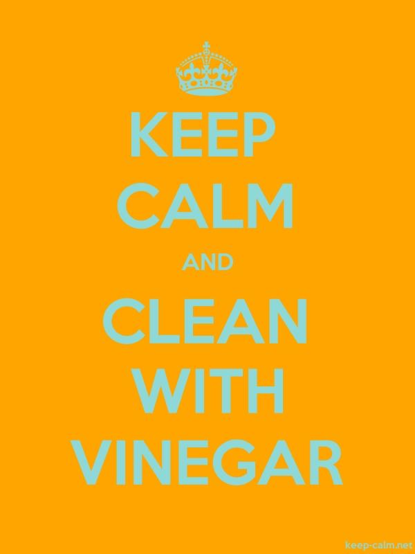 KEEP CALM AND CLEAN WITH VINEGAR - lightblue/orange - Default (600x800)