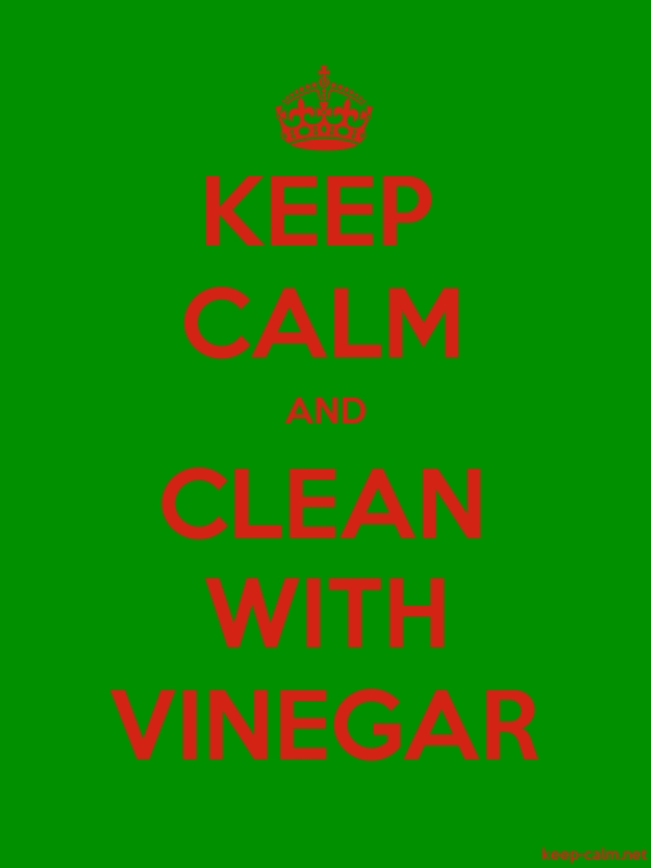KEEP CALM AND CLEAN WITH VINEGAR - red/green - Default (600x800)
