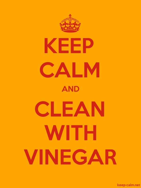 KEEP CALM AND CLEAN WITH VINEGAR - red/orange - Default (600x800)