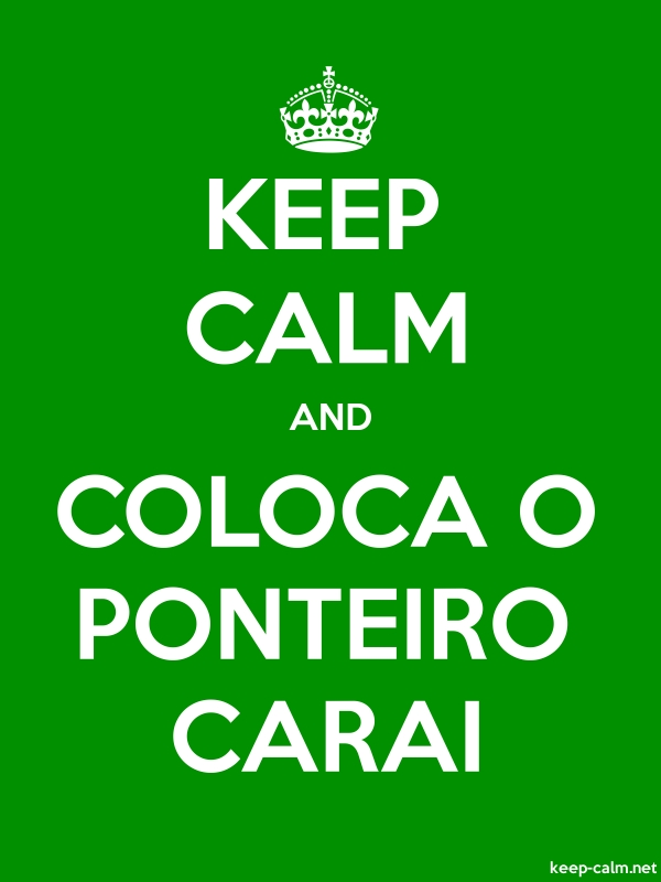 KEEP CALM AND COLOCA O PONTEIRO CARAI - white/green - Default (600x800)