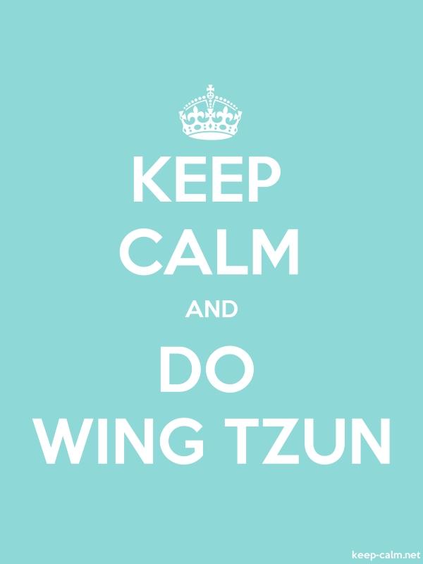 KEEP CALM AND DO WING TZUN - white/lightblue - Default (600x800)