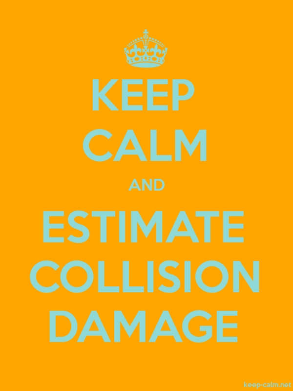 KEEP CALM AND ESTIMATE COLLISION DAMAGE - lightblue/orange - Default (600x800)