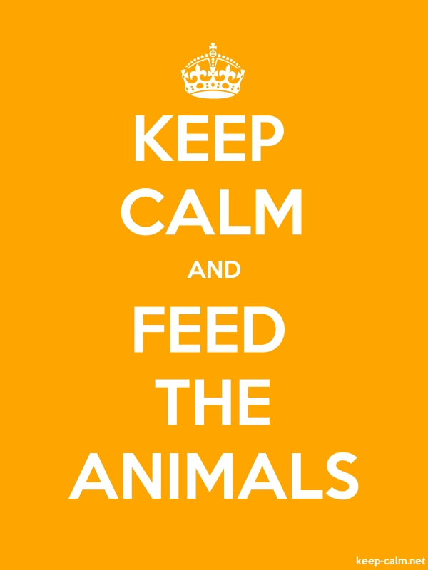 KEEP CALM AND FEED THE ANIMALS - white/orange - Default (600x800)