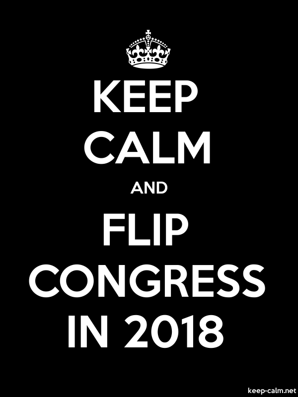 KEEP CALM AND FLIP CONGRESS IN 2018 - white/black - Default (600x800)