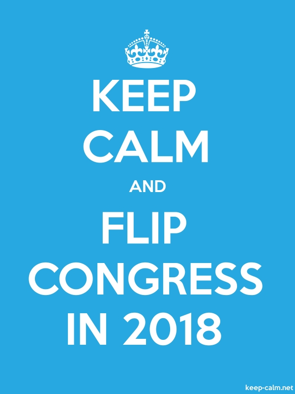 KEEP CALM AND FLIP CONGRESS IN 2018 - white/blue - Default (600x800)
