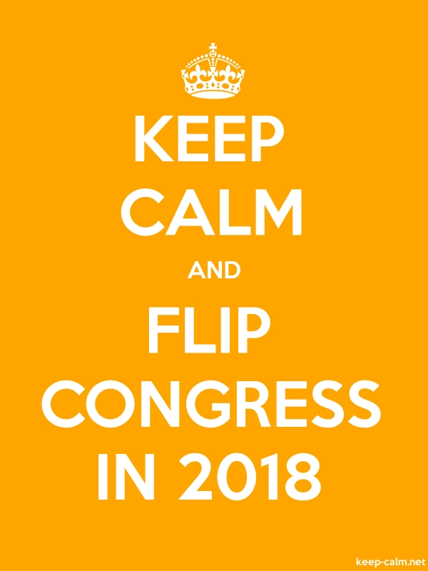 KEEP CALM AND FLIP CONGRESS IN 2018 - white/orange - Default (600x800)