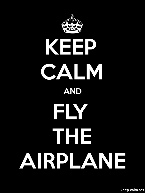 KEEP CALM AND FLY THE AIRPLANE - white/black - Default (600x800)