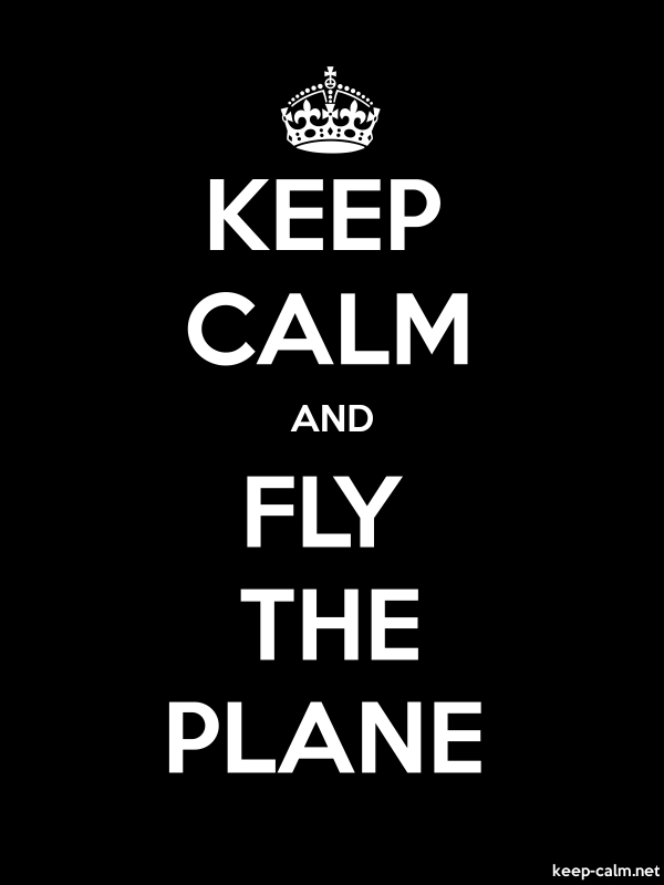 KEEP CALM AND FLY THE PLANE - white/black - Default (600x800)