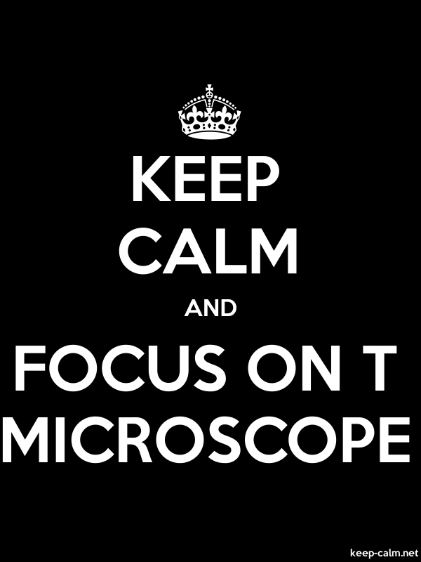 KEEP CALM AND FOCUS ON T MICROSCOPE - white/black - Default (600x800)