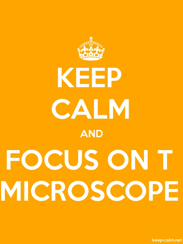 KEEP CALM AND FOCUS ON T MICROSCOPE - white/orange - Default (600x800)