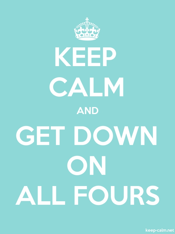 KEEP CALM AND GET DOWN ON ALL FOURS - white/lightblue - Default (600x800)