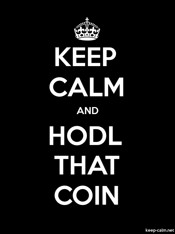 KEEP CALM AND HODL THAT COIN - white/black - Default (600x800)