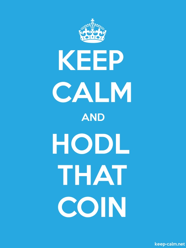 KEEP CALM AND HODL THAT COIN - white/blue - Default (600x800)