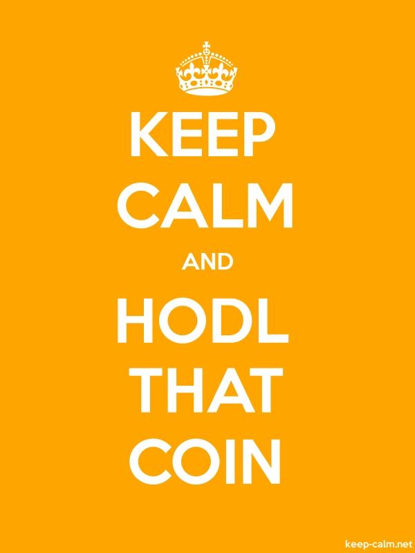 KEEP CALM AND HODL THAT COIN - white/orange - Default (600x800)