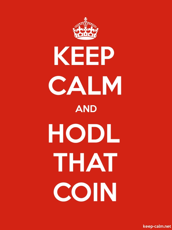 KEEP CALM AND HODL THAT COIN - white/red - Default (600x800)