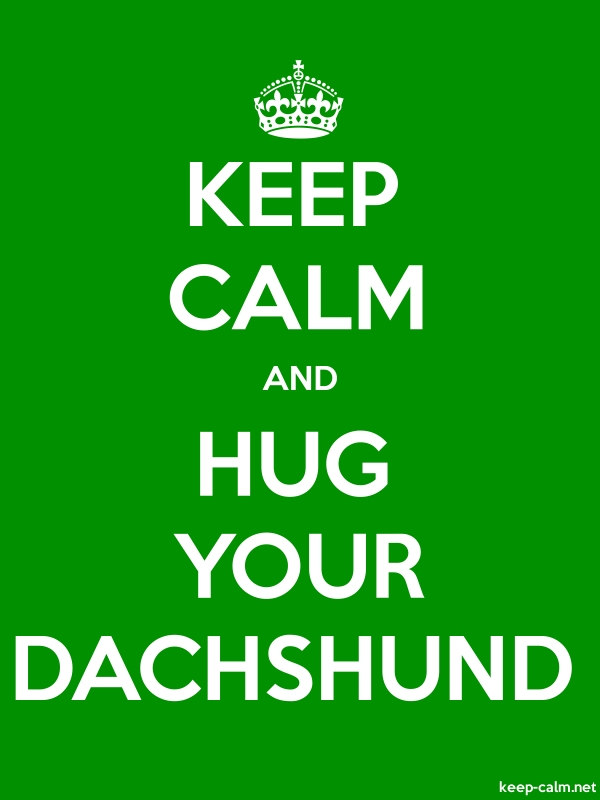 KEEP CALM AND HUG YOUR DACHSHUND - white/green - Default (600x800)