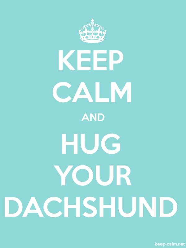 KEEP CALM AND HUG YOUR DACHSHUND - white/lightblue - Default (600x800)
