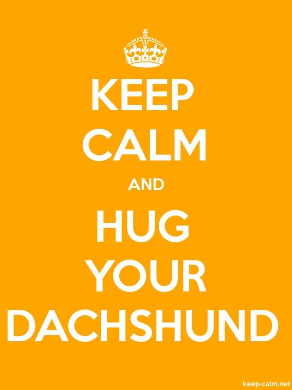 KEEP CALM AND HUG YOUR DACHSHUND - white/orange - Default (600x800)