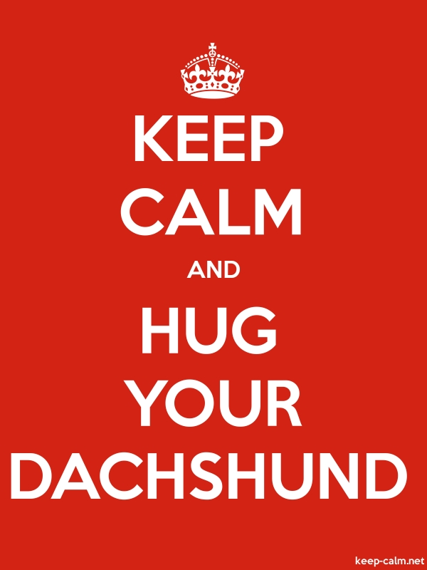 KEEP CALM AND HUG YOUR DACHSHUND - white/red - Default (600x800)