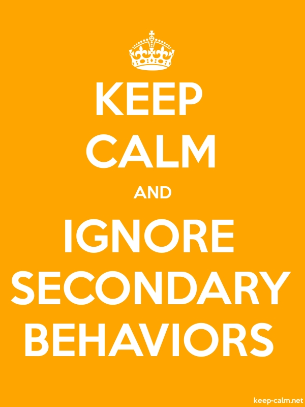 KEEP CALM AND IGNORE SECONDARY BEHAVIORS - white/orange - Default (600x800)