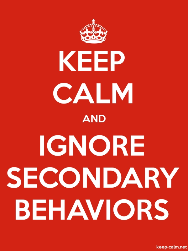 KEEP CALM AND IGNORE SECONDARY BEHAVIORS - white/red - Default (600x800)