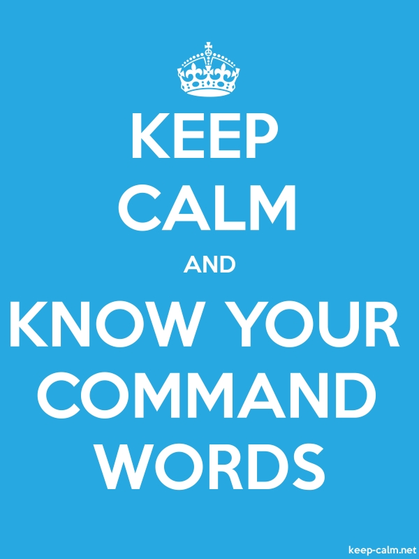 KEEP CALM AND KNOW YOUR COMMAND WORDS - white/blue - Default (600x800)