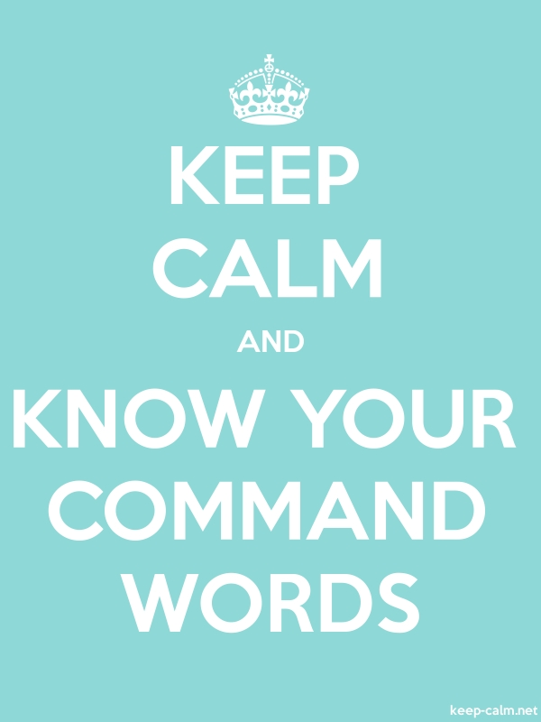 KEEP CALM AND KNOW YOUR COMMAND WORDS - white/lightblue - Default (600x800)