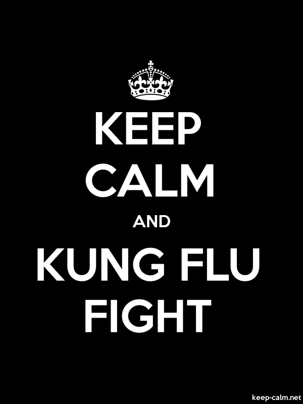 KEEP CALM AND KUNG FLU FIGHT - white/black - Default (600x800)