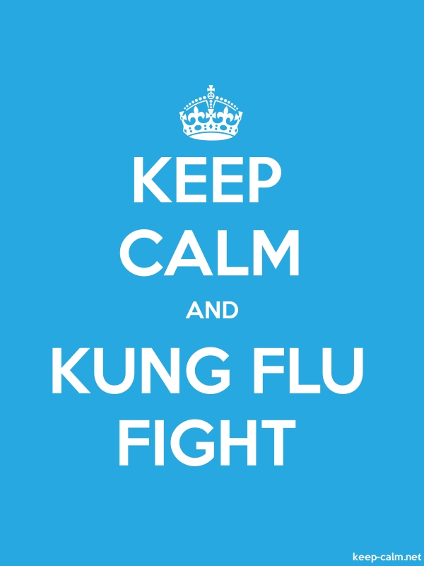KEEP CALM AND KUNG FLU FIGHT - white/blue - Default (600x800)