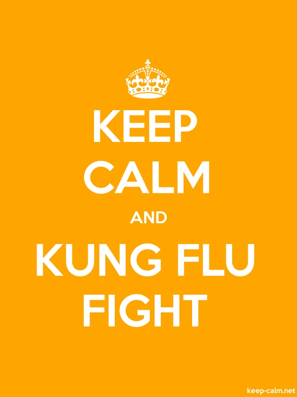 KEEP CALM AND KUNG FLU FIGHT - white/orange - Default (600x800)