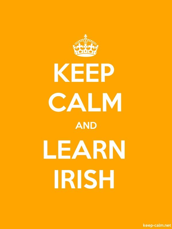 KEEP CALM AND LEARN IRISH - white/orange - Default (600x800)