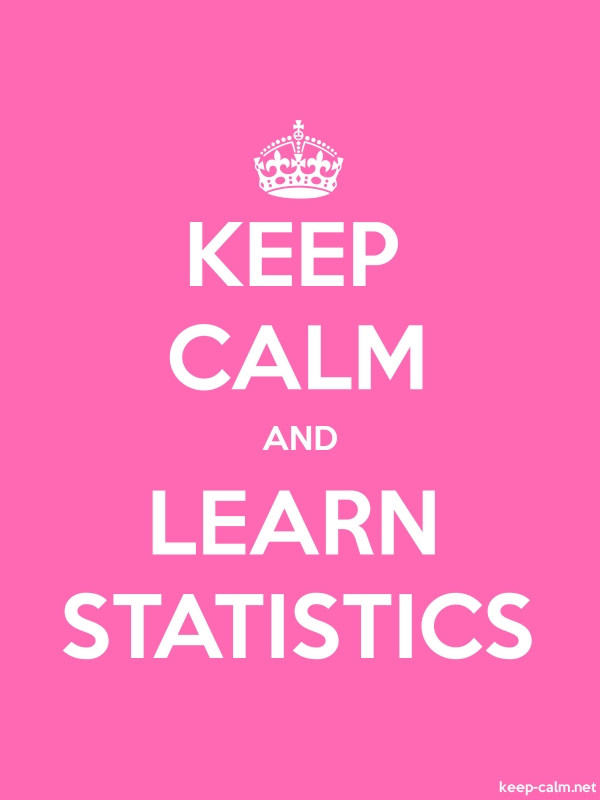 KEEP CALM AND LEARN STATISTICS - white/pink - Default (600x800)