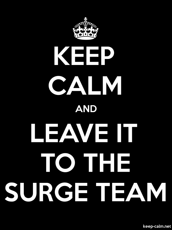 KEEP CALM AND LEAVE IT TO THE SURGE TEAM - white/black - Default (600x800)