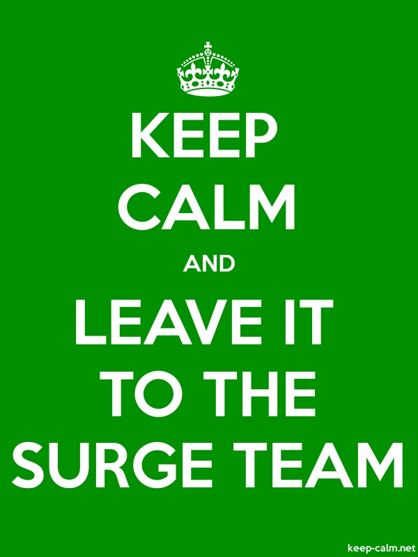 KEEP CALM AND LEAVE IT TO THE SURGE TEAM - white/green - Default (600x800)