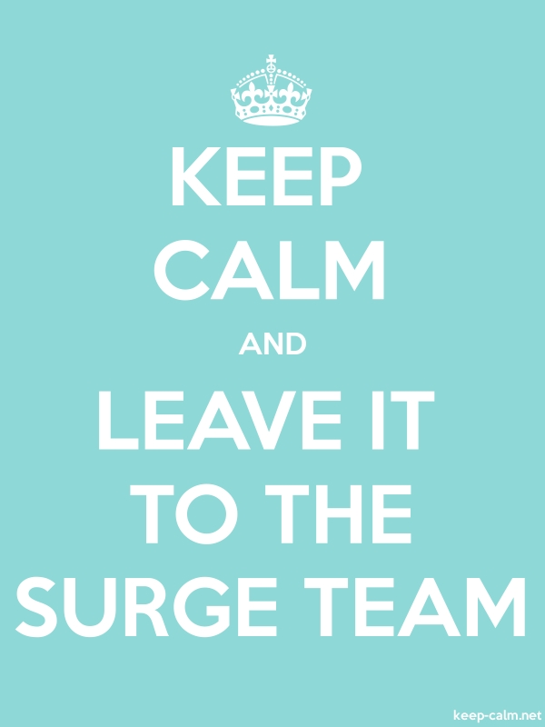KEEP CALM AND LEAVE IT TO THE SURGE TEAM - white/lightblue - Default (600x800)