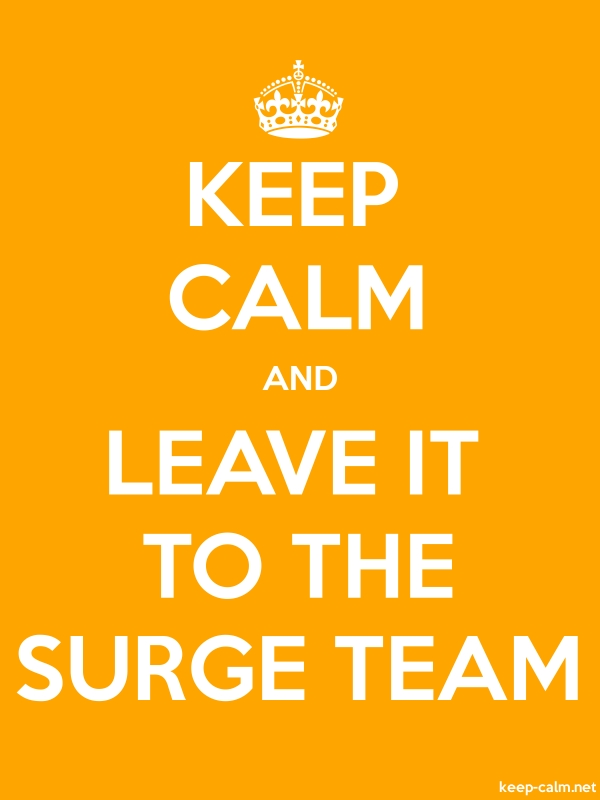 KEEP CALM AND LEAVE IT TO THE SURGE TEAM - white/orange - Default (600x800)