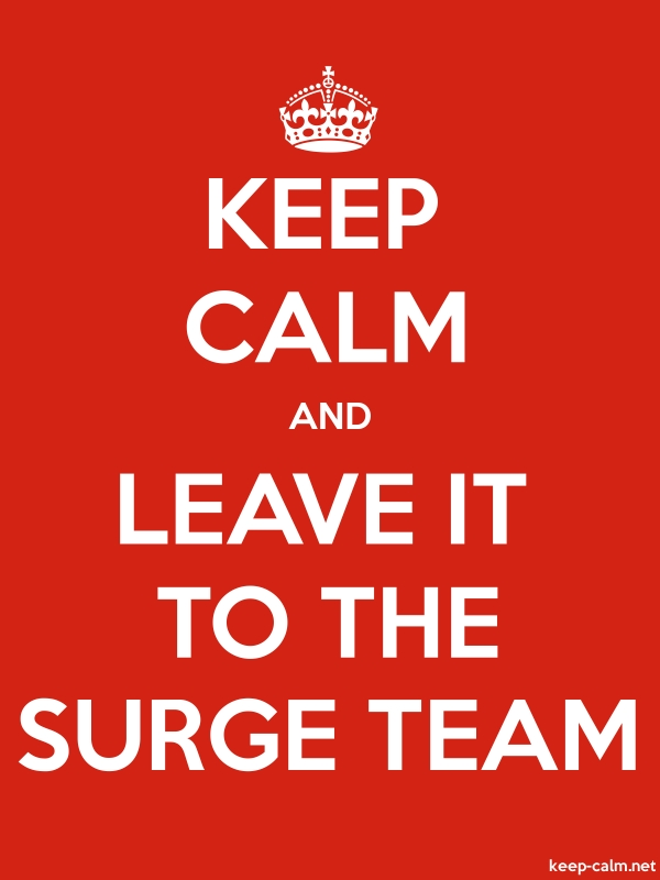 KEEP CALM AND LEAVE IT TO THE SURGE TEAM - white/red - Default (600x800)