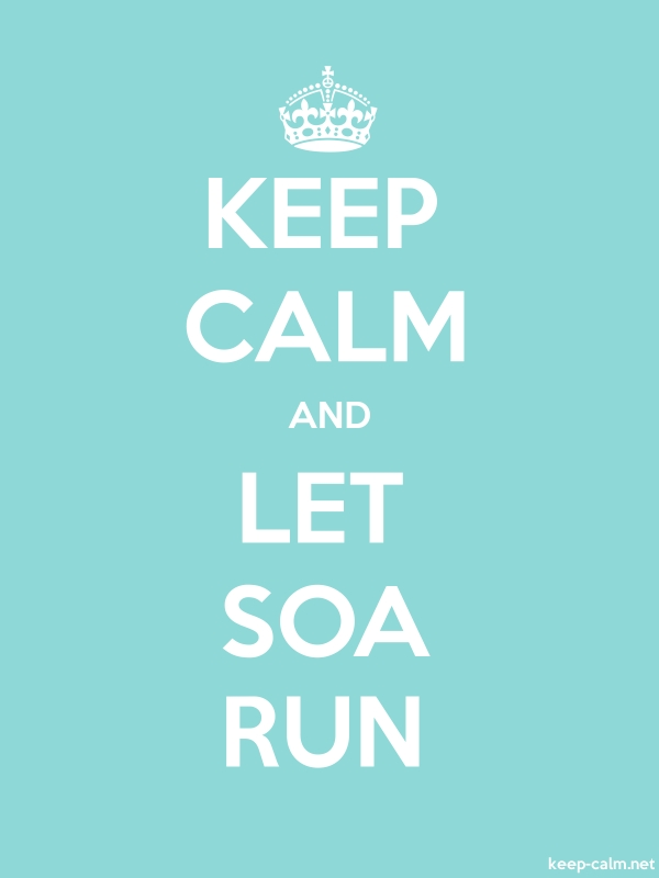 KEEP CALM AND LET SOA RUN - white/lightblue - Default (600x800)