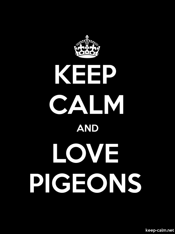 KEEP CALM AND LOVE PIGEONS - white/black - Default (600x800)