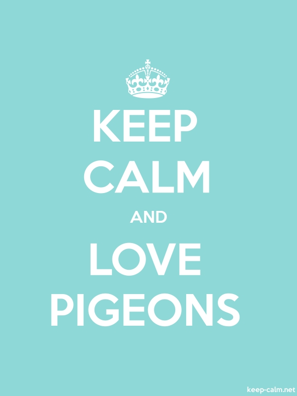 KEEP CALM AND LOVE PIGEONS - white/lightblue - Default (600x800)