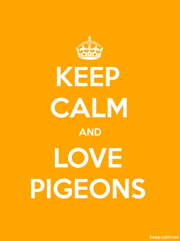 KEEP CALM AND LOVE PIGEONS - white/orange - Default (600x800)