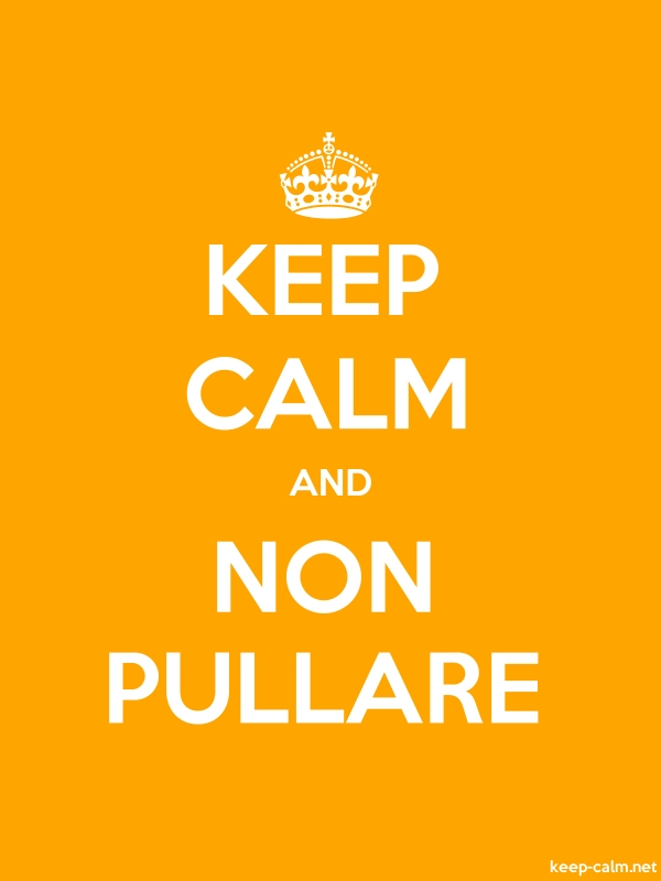 KEEP CALM AND NON PULLARE - white/orange - Default (600x800)