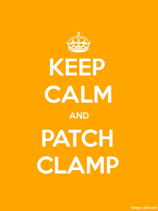 KEEP CALM AND PATCH CLAMP - white/orange - Default (600x800)