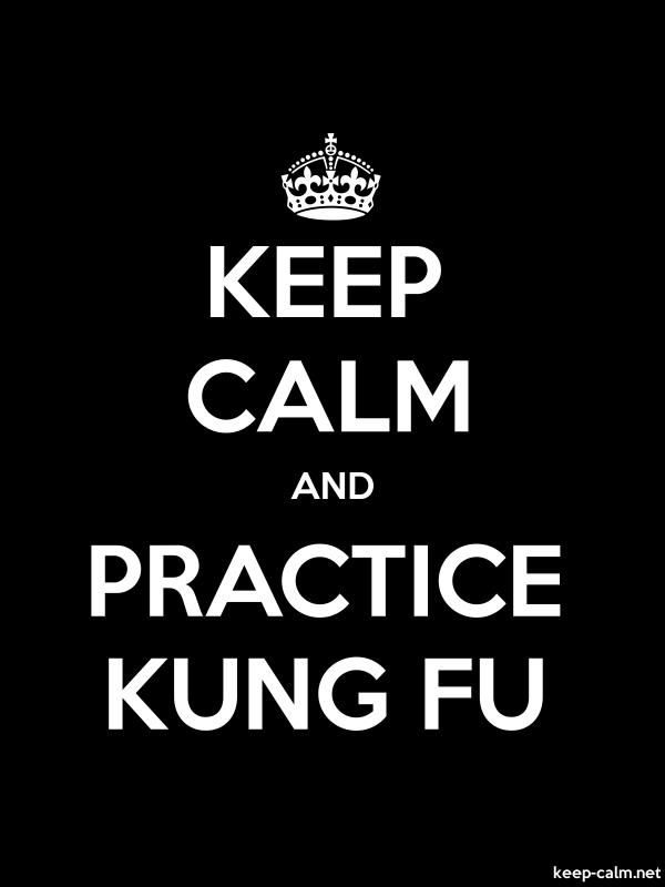 KEEP CALM AND PRACTICE KUNG FU - white/black - Default (600x800)