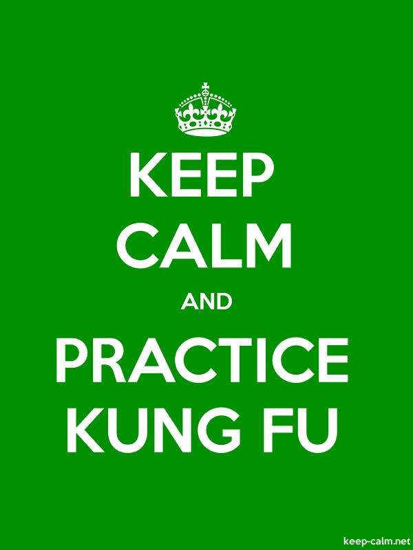 KEEP CALM AND PRACTICE KUNG FU - white/green - Default (600x800)