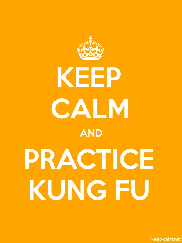 KEEP CALM AND PRACTICE KUNG FU - white/orange - Default (600x800)